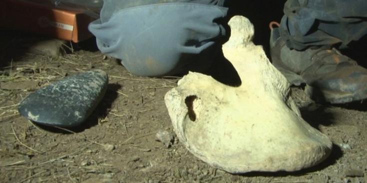 Restes humanes i eines trobades a la Cova de l'Home Mort.