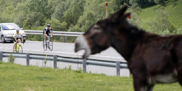 código de circulación, bicicleta, ciclista, ciclismo, carretera, movilidad